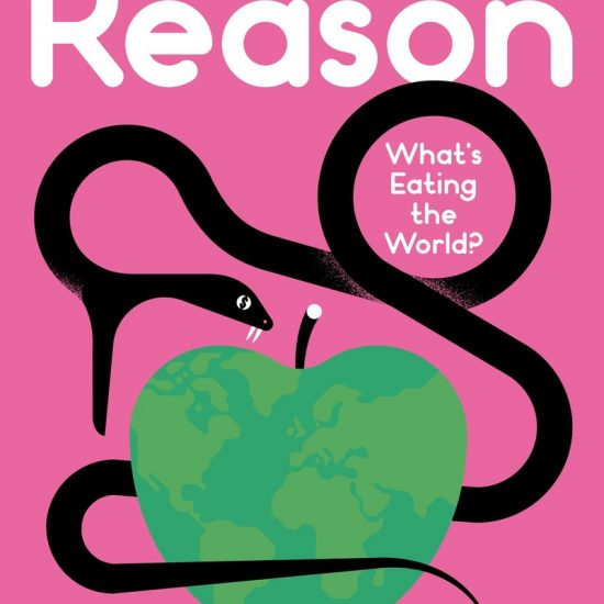 revista weapons of reason 5